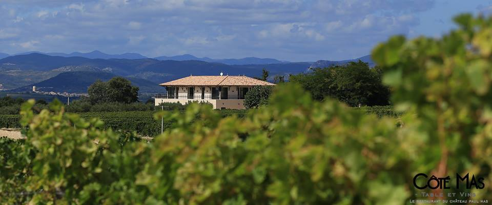 2013: The Languedoc Makes Its Mark